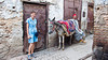 Esther Anne with a donkey in the medina of Fes, Morocco, North Africa.