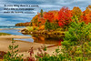 The shoreline of Lake Superior with fall foliage colour near Harbour Springs, Michigan, USA.