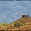 Brown's Mountain and Saguaros