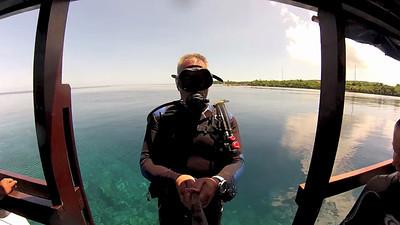 Short stills and underwater timelapse sequences