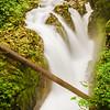 Sol Duc Falls (9206)