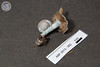 ABF-2013-352 Stropharia caerulea