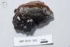 ABF-2014-025 Phellinus tremulae