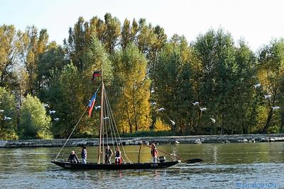 Festival de Loire 2007 24 C-Mouton