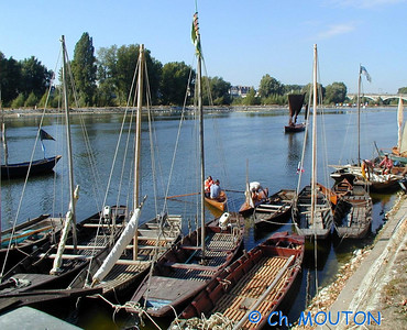 Fetes de Loire 2003 01 C-Mouton