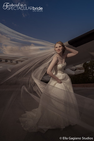 Bride with Plane 02