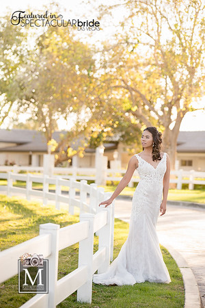 Bride at the Stables 03