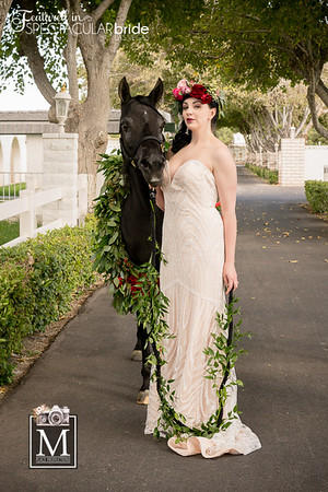 brides with horses 02