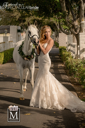 Brides with Horses 03