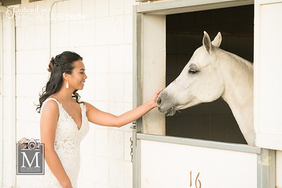 Brides with Horses 04