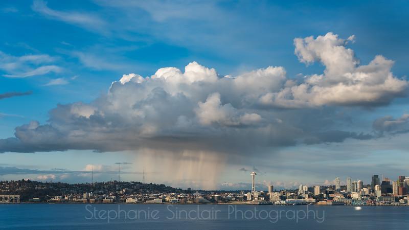 Seattle Showers