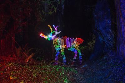 Rainbow Reindeer