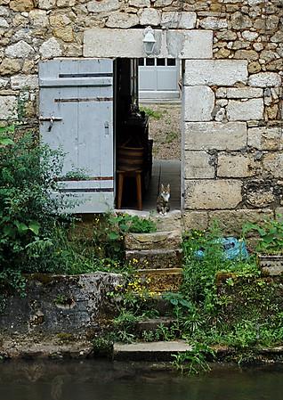 Cat in a Cottage Doorway
