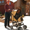 02/23/08: Diane sporting her new kitty-cat Jeep Stroller. Spencer and Haley love it!