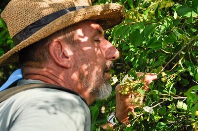 Big Bad Dirk smelling a flower