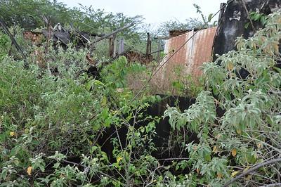 Second Knuku huisje has collapsed