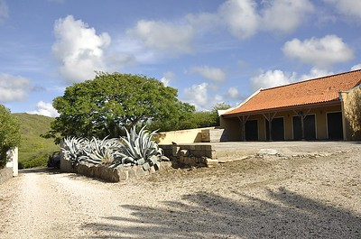 some of the newer buildings surround the plantation home.