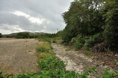 This year its been very dry so far as you can see by this photo of the creek that empties out at Vaarsenbaai.