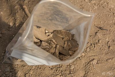 Bag full of Indian bones.