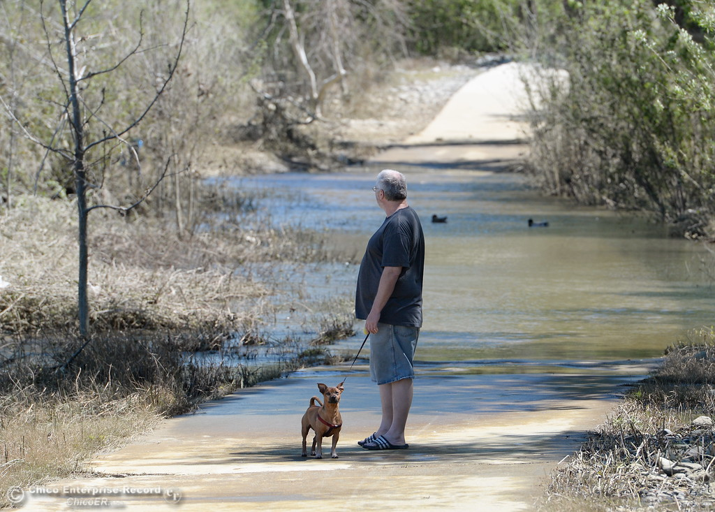 . Tim Greenleaf and his dog Rocky of Oroville walk along a still partly flooded path near Bedrock Park in Oroville, Calif. Tuesday May 2, 2017.  (Bill Husa -- Enterprise-Record)