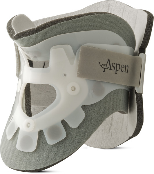 Aspen old products 2010