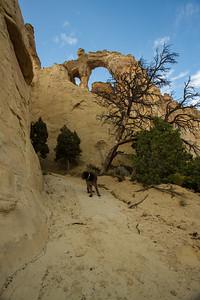 Grosvenor Arch. Grand Staircase Escalante National Monument, Utah USA