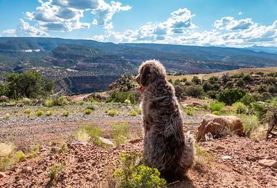 Rim Rocker Trail - Montrose to Moab, Colorado USA