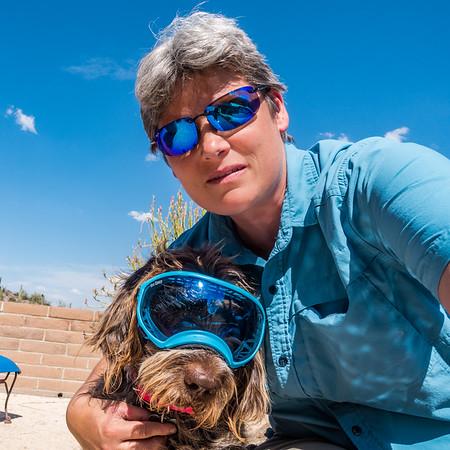 Pixelated Jaypeg, Spinone italiano, and Margy sporting blue mirror shades. Rex Specs and Maui Jim. Tucson, Arizona