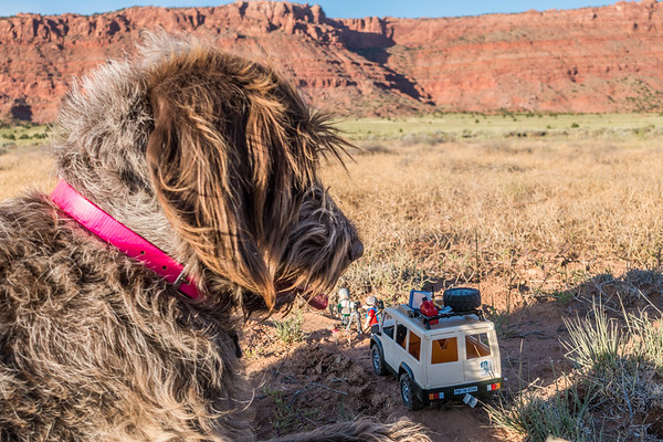 Jaypeg & Playmobil Mini-us adventurers.  Vermillion Cliffs National Monument, Coconino Co., Arizona USA