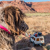 Jaypeg & Playmobil Mini-us adventurers.  Vermillion Cliffs National Monument, Coconino Co., Arizona USA