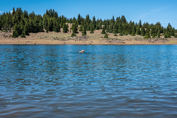 Spectacle Lake, Dixie National forest, Boulder Mountains, Garfield County, Utah USA