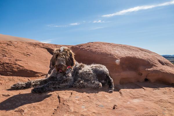 Pixelated Jaypeg. Wind Whistle Rock, Utah