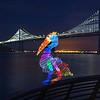 Pelican at the Bay Bridge