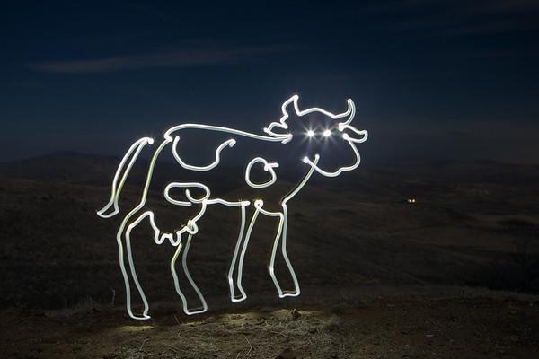 Light Dairy