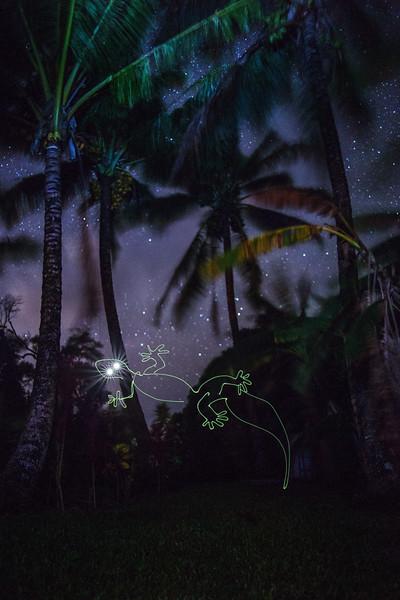 Glowing Gecko