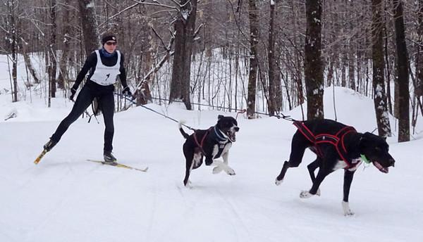 Spirit doggy races