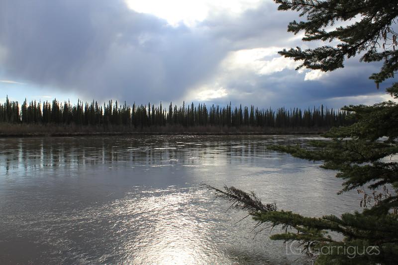 Kantishna River 1