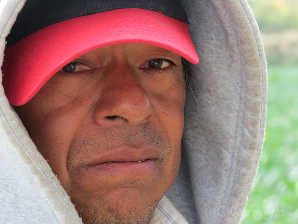 Farmworker Jose Santiago, Mixtec, takes a break<br /> from harvesting broccoli in Chular, California.