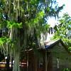 Louisiana Home