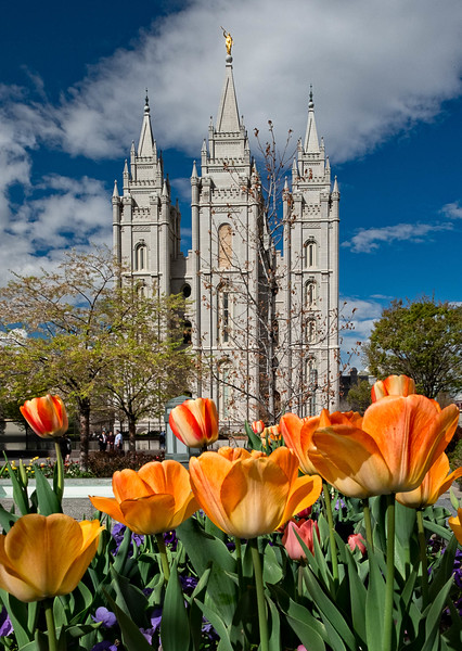 Salt Lake Temple, Salt Lake City, Utah (LDS Mormon)