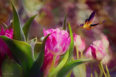 Spring Splendor 4357-FA-7055