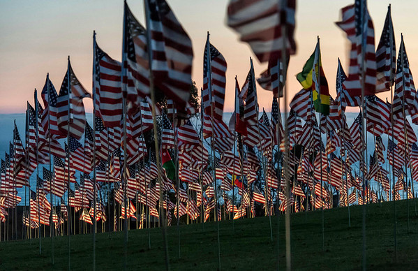 2,977 Flags