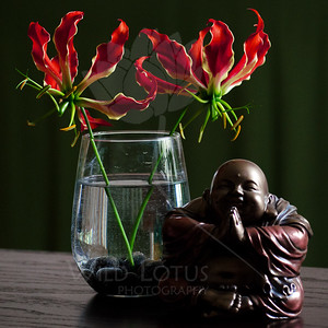 And The Buddha Says...