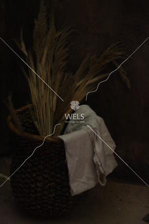Wheat by jduran