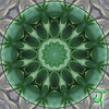 Anahata (from an Agave plant)