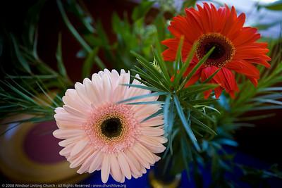 Flowers - churchlive.org - Windsor Uniting Church, Brisbane, Queensland, Australia, 2008.