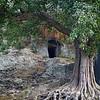 I am becoming convinced of the futility of samsara and resolve to dedicate myself to meditation. —Milarepa <i> L2089 Allahabad </i>