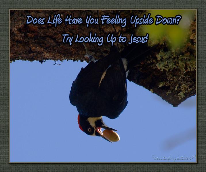 Life Upside Down?