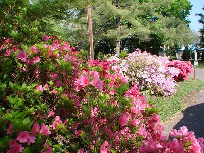Matthew Fox  http://www.matthewfox.org/sys-tmpl/door/    Shalem Institute  http://www.shalem.org/ 2010 April 23 & 24 Rockville, MD  Unitarian Universalist Church of Rockville  http://www.uucr.org/