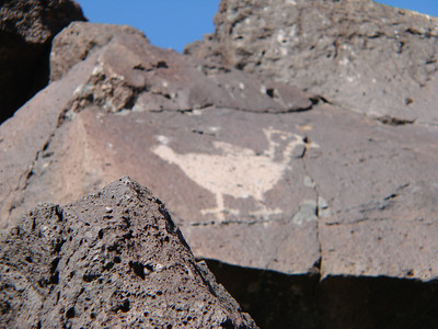 Petroglyph National Monument, Albuquerque, New Mexico  http://www.nps.gov/petr/index.htm